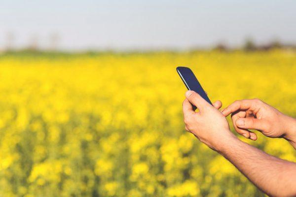 Cliente BB Seguros agora pode notificar sinistros rurais via aplicativo