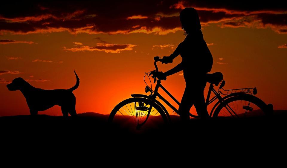 Caem 56% os acidentes com bicicletas na rodovia Arteris Regis Bittencourt