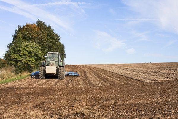 Seguro Agrícola: um investimento que pode garantir a sua produção
