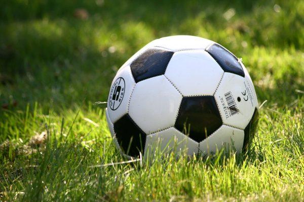 Colaboradores participam da 19º edição da Super Liga Allianz Partners