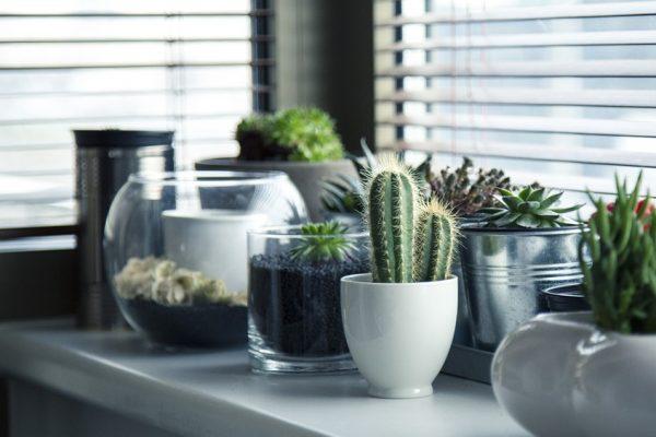 Saiba como criar uma decoração moderna para a sua casa