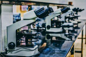 Eventos incentivam divulgação científica e combatem negacionismo