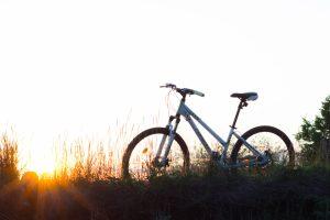 Em parceria com CCS-SP e APTS, Argo realiza webinar sobre seguro de bicicleta